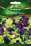 Pflücksalat Babyleaf Mischung | Salatsamen von Quedlinburger