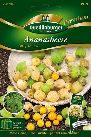 Ananasbeere Early Yellow von Quedlinburger Saatgut