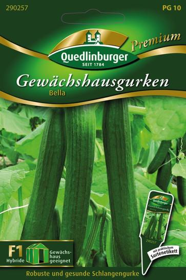 Gewächshausgurke Bella | Gurkensamen von Quedlinburger
