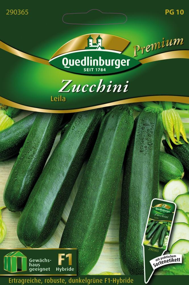 3 x Quedlingburger Saatgut Zucchini Diamant