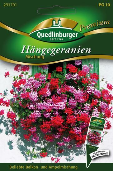 Hängegeranien Mischung von Quedlinburger Saatgut