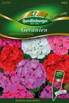 Geranien stehende Mischung von Quedlinburger Saatgut