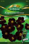Kapuzinerkresse Black Velvet von Quedlinburger Saatgut