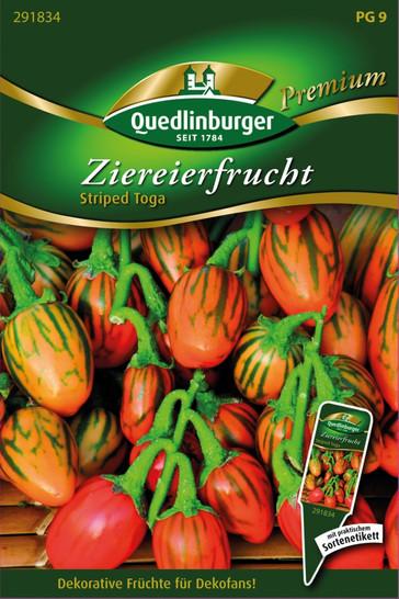 Ziereierfrucht Striped Toga von Quedlinburger Saatgut