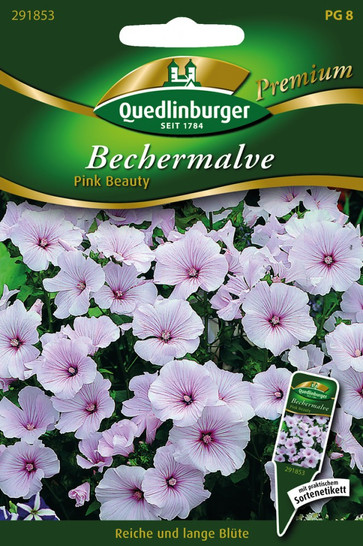 Bechermalven Pink Beauty von Quedlinburger Saatgut