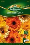 Ringelblumen Kablouna Mischung von Quedlinburger Saatgut