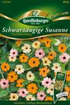 Schwarzäugige Susanne Pastellmischung | Schwarzäugige Susannesamen von Quedlinburger