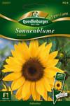 Sonnenblumen Eversun von Quedlinburger Saatgut