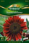 Sonnenblumen Claret von Quedlinburger Saatgut [MHD 01/2020]