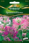 Spinnenblume Wasserspiel Mischung | Spinnenblumensamen von Quedlinburger