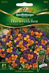 Hornveilchen Sorbet Orange Due von Quedlinburger Saatgut [MHD 01/2020]