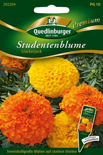 Studentenblumen Crackerjack von Quedlinburger Saatgut [MHD 01/2019]