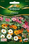 Zinnien Profusion Mix von Quedlinburger Saatgut