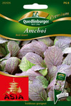 Amchoi Red Giant von Quedlinburger Saatgut [MHD 01/2019]