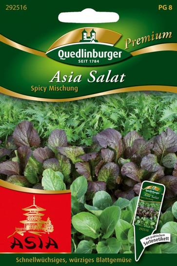 Asia-Salat Spicy Mischung von Quedlinburger Saatgut [MHD 01/2020]