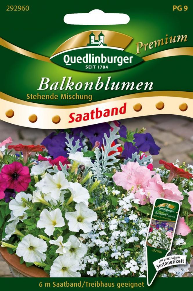 Bartfaden Sensationsmischung Quedlinburger