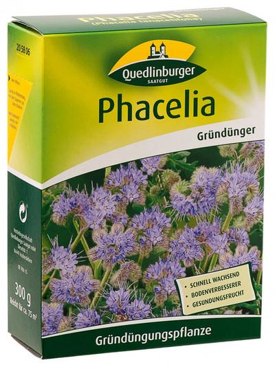 Phacelia 300 g | Gründünger von Quedlinburger