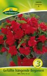 Gefüllte hängende Begonie rot (3 Stück) | Begonienzwiebeln von Quedlinburger