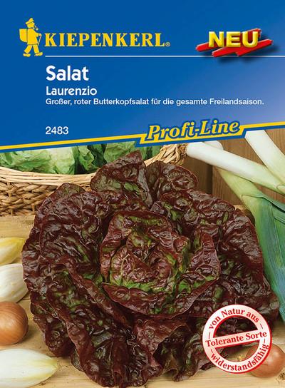 Salat Laurenzio | Salatsamen von Kiepenkerl