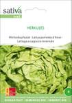 Winterkopfsalat Herkules | Bio-Salatsamen von Sativa Rheinau