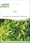Endivie glatt Diva [MHD 12/2018] | Bio-Salatsamen von Sativa Rheinau
