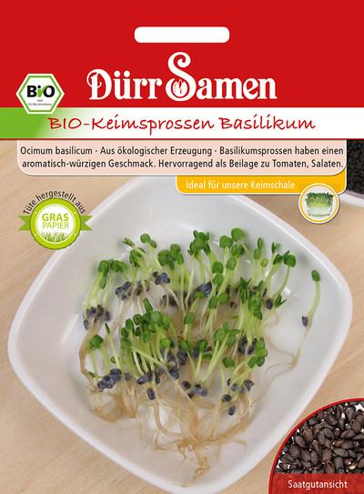 Keimsprossen Basilikum | Bio-Keimsprossen von Dürr Samen