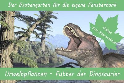 Anzuchtset - Urweltpflanzen - Futter der Dinosaurier von Saflax [MHD 09/2018]