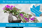 Anzuchtset-Fernöstliche Bonsai-Schätze | Exotische Samen von Saflax