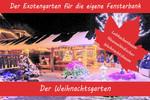 Anzuchtset - Weihnachtsgarten von Saflax [MHD 09/2018]