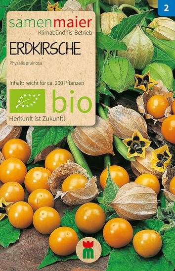 Erdkirsche | Bio-Erdkirschensamen von Samen Maier