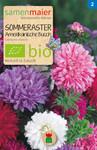 Sommeraster Amerik. Busch Mischung | Bio-Sommerastersamen von Samen Maier [MHD 12/2018]