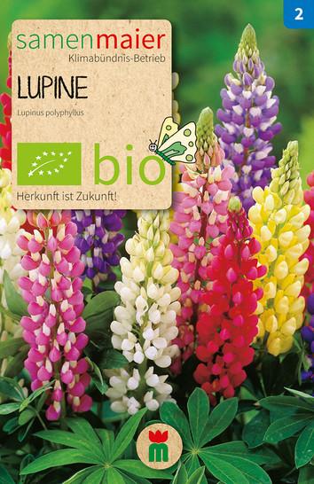 Lupine Mischung | Bio-Lupinensamen von Samen Maier