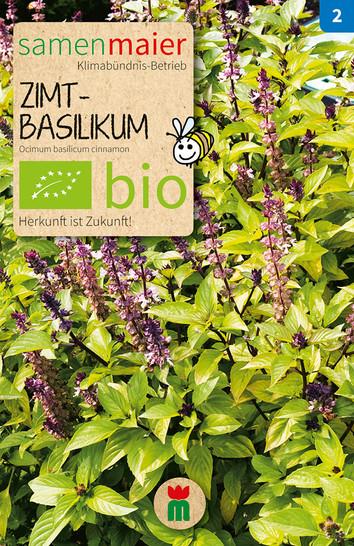 Zimtbasilikum   Bio-Basilikumsamen von Samen Maier