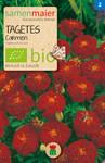 Tagetes Carmen | Bio-Tagetessamen von Samen Maier