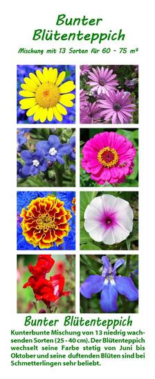 Bunter Blütenteppich | Blumenmischung von Saflax