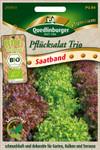 Pflücksalat Trio (Saatband) | Bio-Salatsamen von Quedlinburger