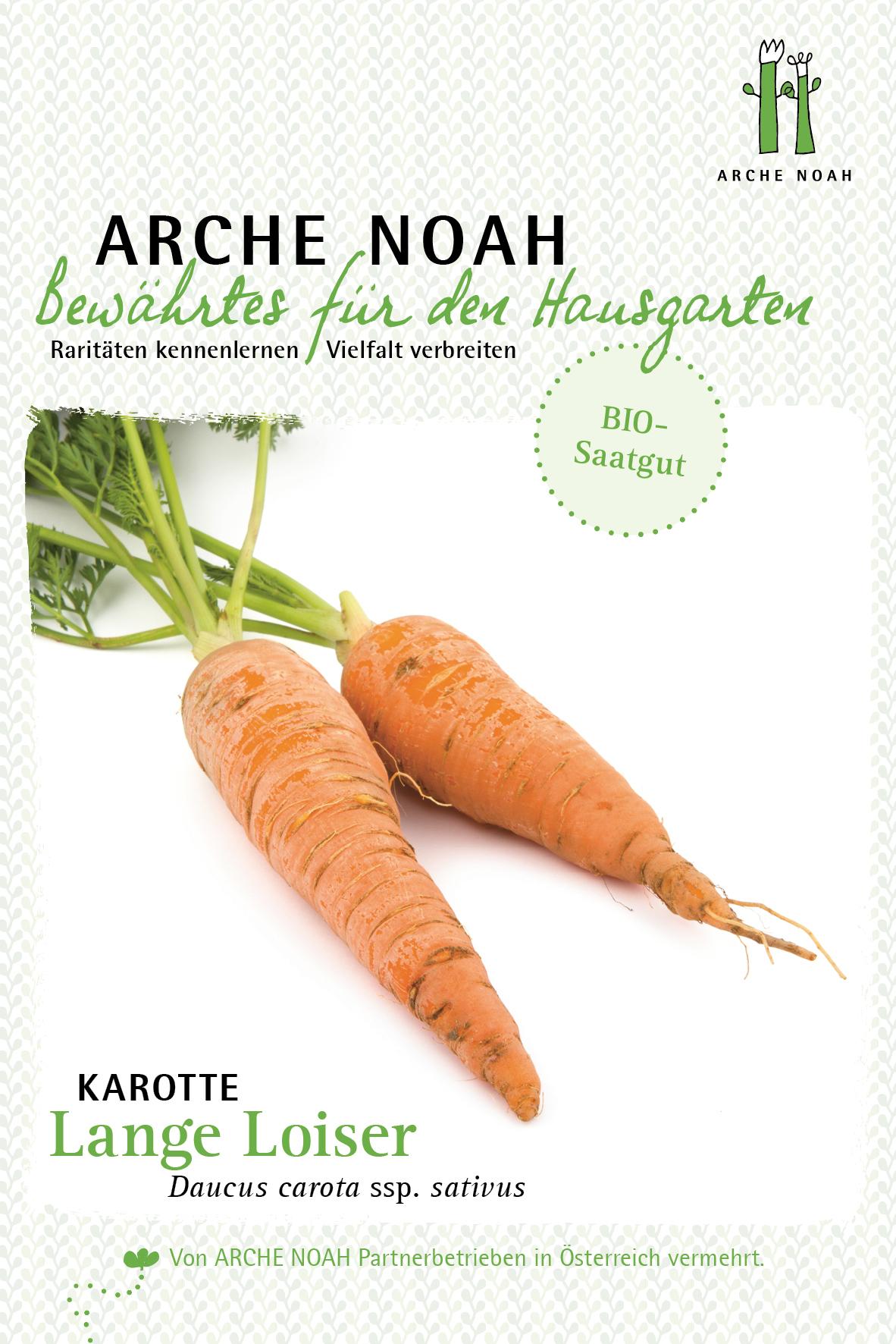 Karotte Lange Loiser   BIO Karottensamen von Arche Noah   Samenhaus Samen &  Sämereien