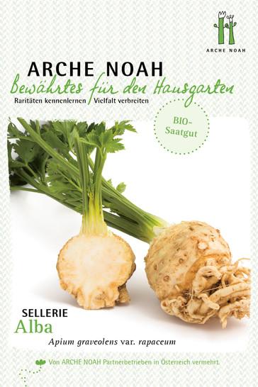 Sellerieknolle Alba | Bio-Selleriesamen von Arche Noah