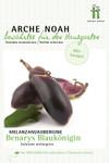 Aubergine Benarys Blaukönigin | Bio-Auberginensamen von Arche Noah