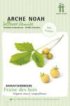 Monatserdbeere Fraise des Bois | Bio-Erdbeerensamen von Arche Noah