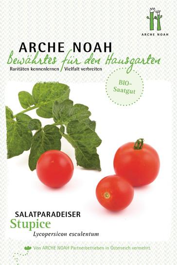 Salattomate Stupice   Bio-Salattomatensamen von Arche Noah
