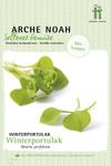 Winterportulak | Portulaksamen von Arche Noah