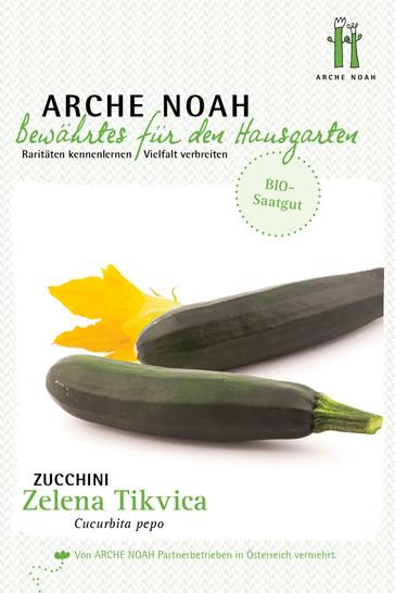 Zucchini Zelena Tikvica | Zucchinisamen von Arche Noah