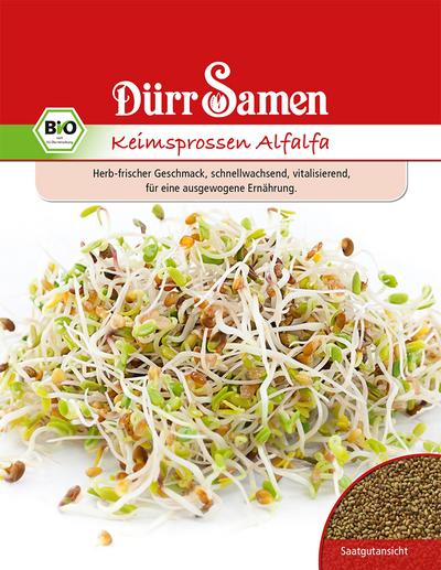 Keimsprossen Alfalfa 1 kg | Bio-Keimsprossen von flortus