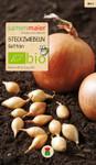 Bio-Steckzwiebeln Setton 250 g | Bio-Steckzwiebeln von Samen Maier