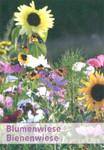 Bienenwiese 100 g | Blumenmischung von Küpper