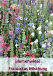 Franziskus Mischung 100 g | Blumenmischungen von Küpper