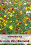 Meissner Blütenfeuerwerk 100 g | Blumenmischung von Küpper