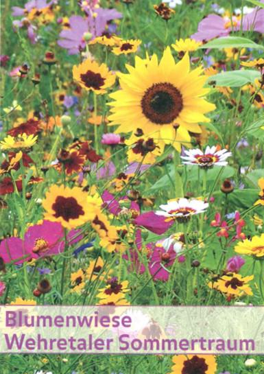 Wehretaler Sommertraum 1 kg | Blumenmischung von Küpper
