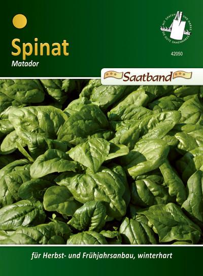 Spinat Matador Saatband | Spinatsamen von N.L. Chrestensen